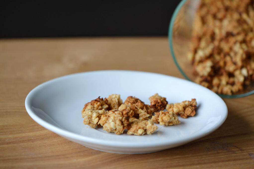 salted caramel granola DSC_0007