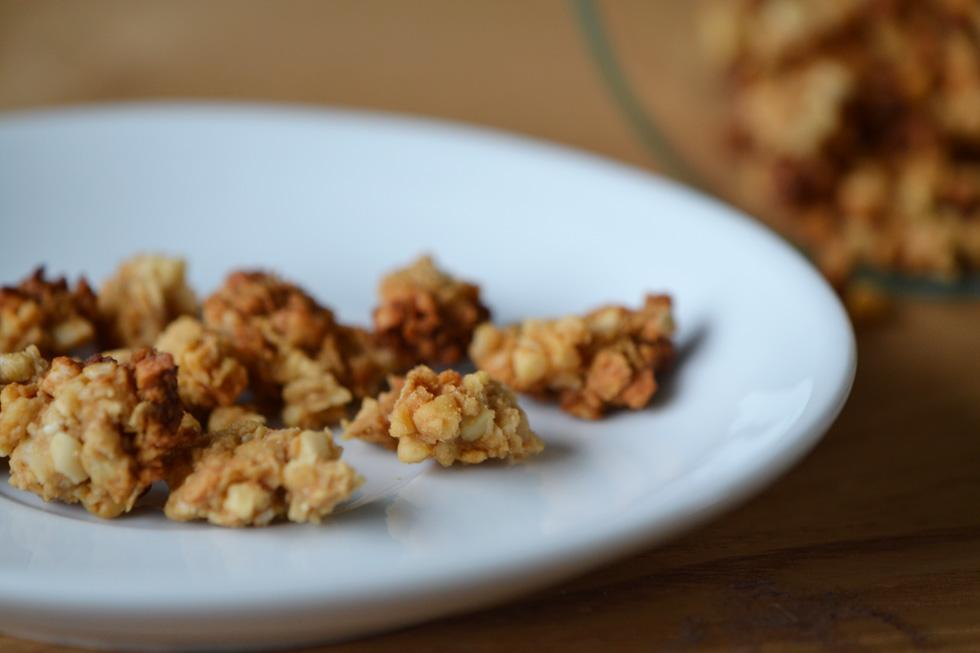 salted caramel granola DSC_0013
