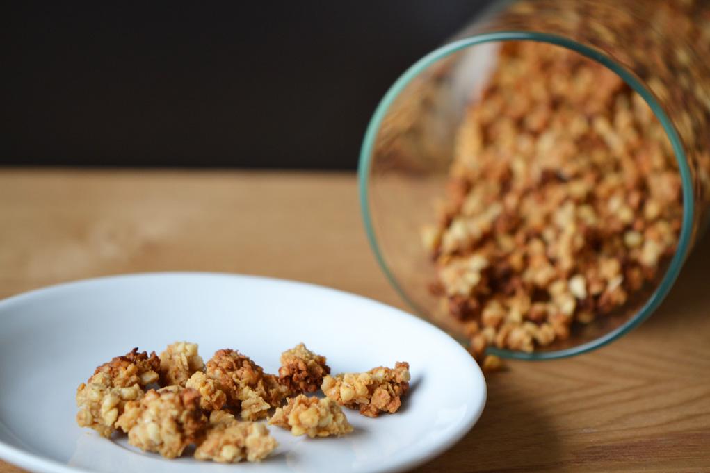 salted caramel granola DSC_0017