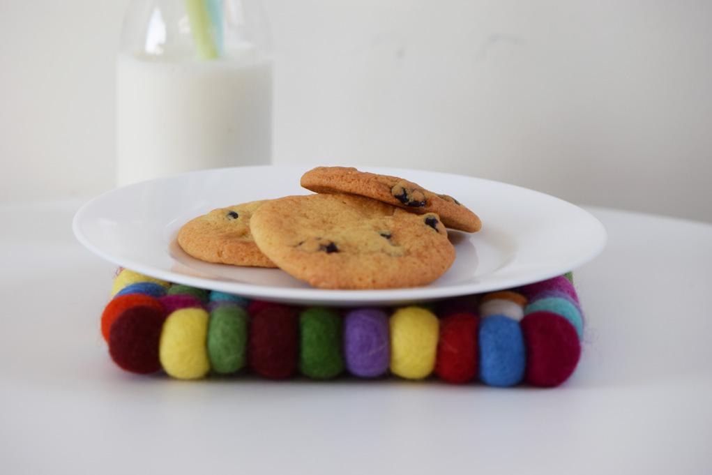 cranberry-cookies-dsc_0052