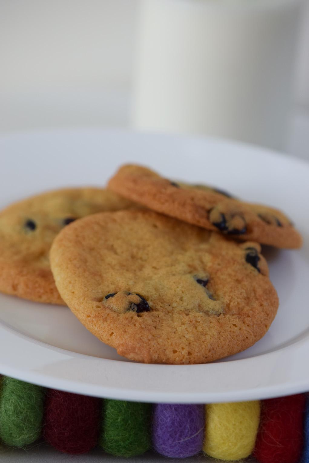 cranberry-cookies-dsc_0060