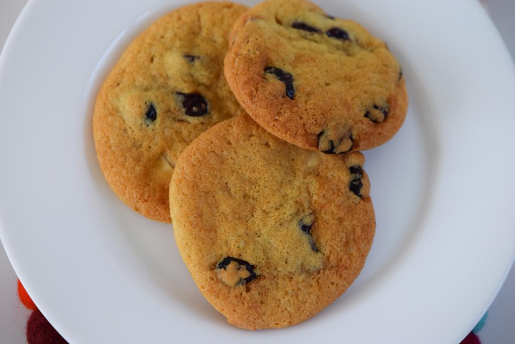 cranberry-cookies-dsc_0064