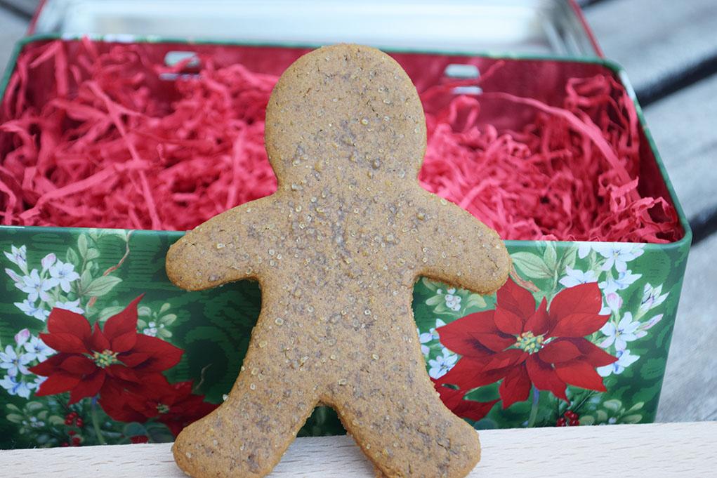 gingerbread cookies_0544