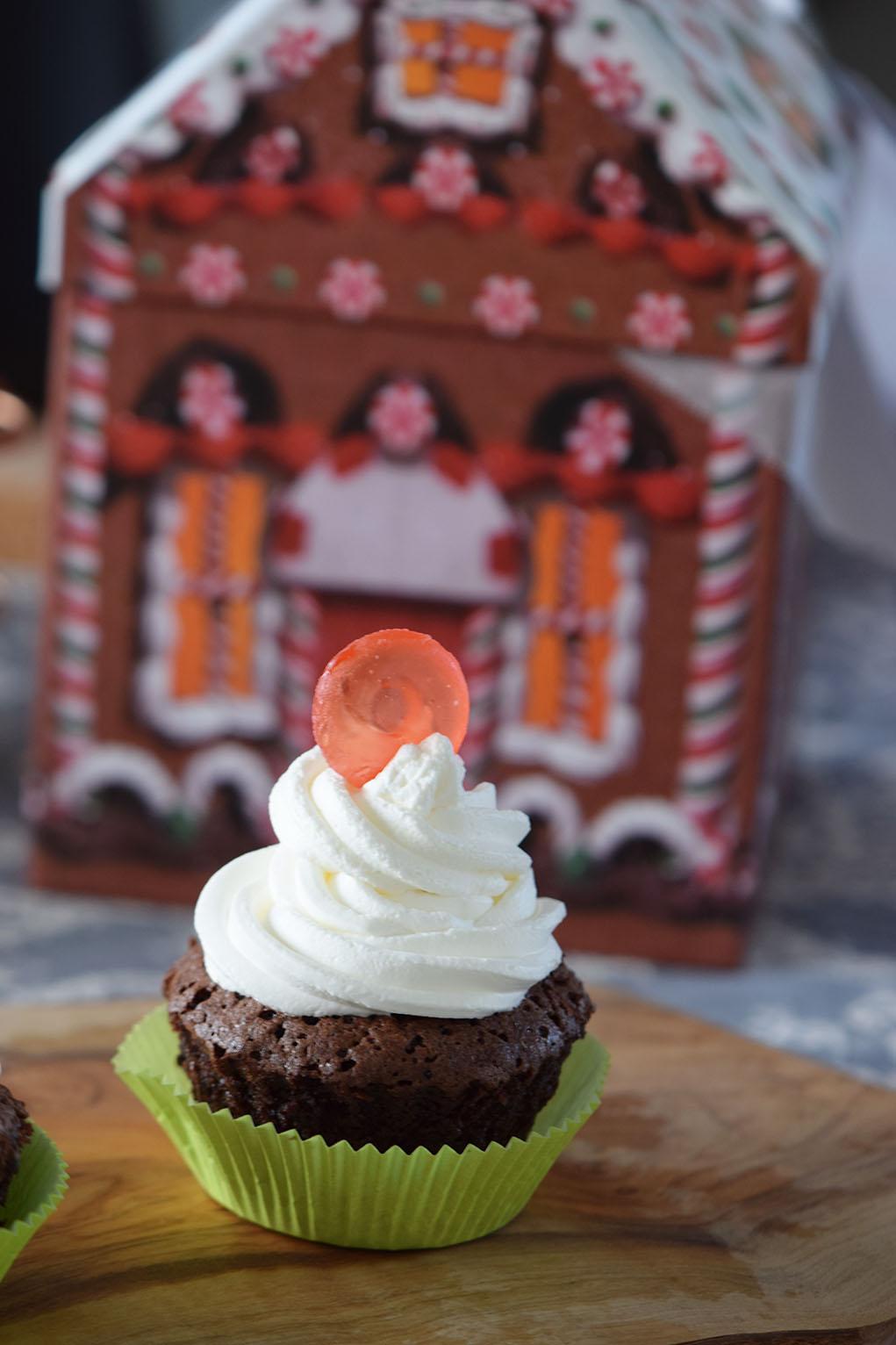 mocha peppermint cupcakes_0498