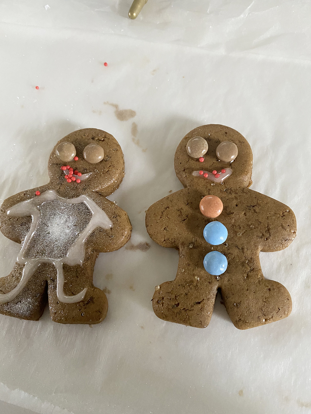 gingerbread cookies__3649